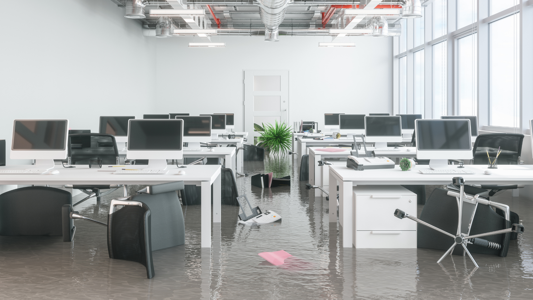 Floods, Fire, Drought & Covid 19 – Small Business takes all the hits!